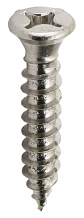 CP HINGE TAPPING SCREWS (100 PC)