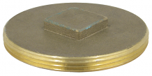 BRASS PLUG - IPS RAISED HEAD 4""