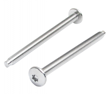 SHOWER VALVE CP ESCUTCHEON SCREWS (1 PR)